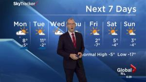 Edmonton Weather Forecast: Feb 7