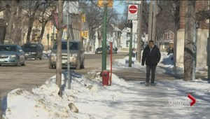 Drivers ed program helps new Canadians to drive into the snow