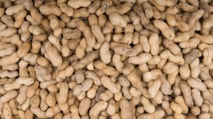 British restaurateur convicted after peanut allergy customer dies from 'no nuts' dish