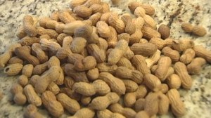 Early exposure to peanuts may prevent allergies later on: study