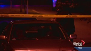 Evergreen homicide update