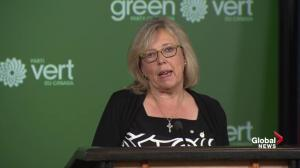 Elizabeth May to remain on as Green Party leader