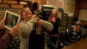 Emotional reunion for dog and owner after being stolen