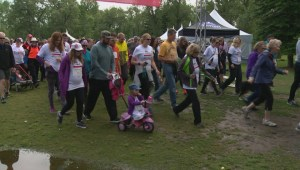Calgary researchers walk for Multiple Sclerosis after promising year