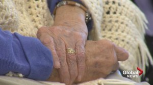 UNB researcher looking into elder financial abuse