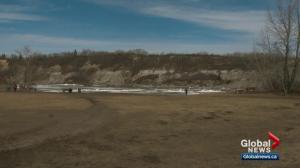 Edmonton fire crews issue warning after dog swept into North Saskatchewan River