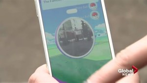 Gotta catch them all: Pokemon Go has stampeders searching for new form of livestock