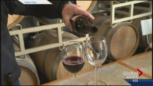 Wine tourism on the rise