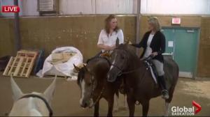 Erica Milligan – horse trainer