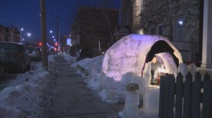 'Urban igloo' becoming popular attraction in Cabbagetown