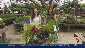 Gardening with Niki Jabbour
