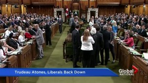 Prime Minister Trudeau faces fallout from House of Commons scuffle