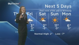 University Manitoba Bisons QB trades spots with Weather specialist Mike Koncan