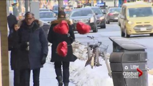 Environment Canada urging Torontonians to spend Valentine's Day indoors