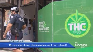 Marijuana dispensaries sell recreational pot despite police crackdown