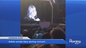 Adele scolds fans during concert