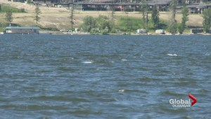 Additional measures to protect Kelowna's lakeshore