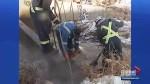 Tanker illegally dumps crude oil near Lloydminster, Sask. water treatment plant