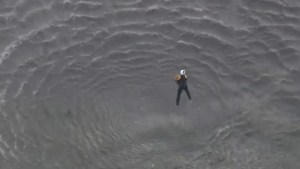 U.S. rescue crews save dog trapped in dangerous rushing waters