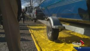 Okanagan film maker takes up anti-zebra mussel cause