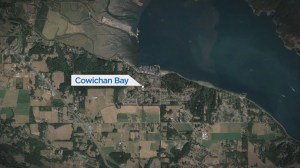 Young child caught up in Cowichan Bay boating accident