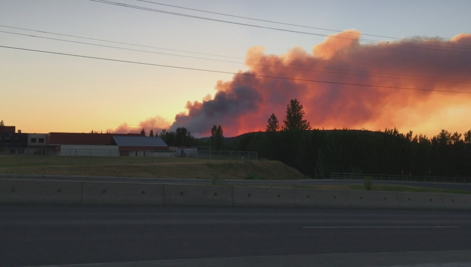 Wildfire near 100 Mile House grows to 1500 hectares