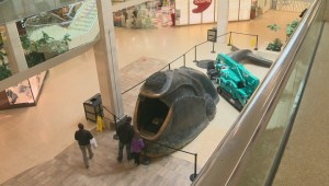 Whale sculpture returns to West Edmonton Mall