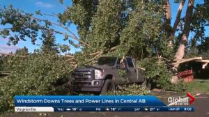 Red Deer declares local state of emergency after severe thunderstorm