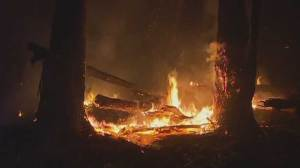 Large bushfire threatens more Australian homes