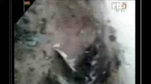 Raw footage released of first responders at Air Algerie crash site