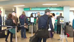 Fredericton International Airport happy for steps to reduce wait times, but feel it's a short term solution
