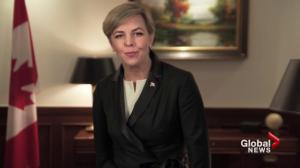 Kellie Leitch's awkward campaign video goes viral