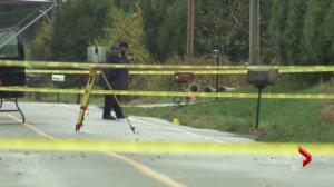 Dismembered body found in rural Langley