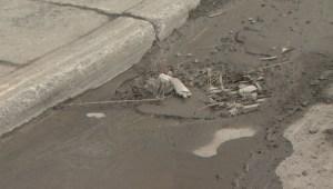 RAW: Champlain, Turcot rebuild may cause water contamination
