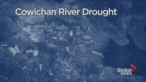 Drought hurts economy in Cowichan Valley