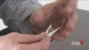 Politics of legalizing pot giving hope to marijuana advocates
