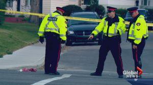 Man in custody following fatal hit-and-run