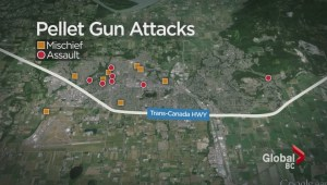 Random pellet gun shootings in Abbotsford