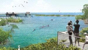 U.S. aquarium to move dolphins into 1st North American dolphin sanctuary