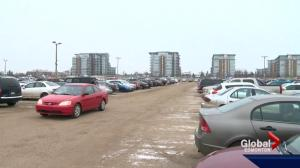Edmonton startup Stashii offers peer-to-peer solution to parking woes