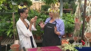 Gardening: Macrame plant hangers