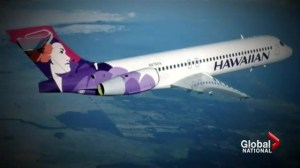 Teen stowaway survives flight to Hawaii