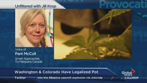 Marijuana legalization debate