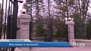 Was Harper present during teenage intoxication at 24 Sussex?