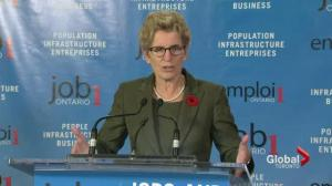 Won't cut and slash to balance: Wynne