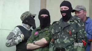 Pro-Russian insurgents release international observers