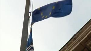 Raw video: Protesters raise EU flag at Kiev city hall