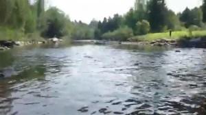 Oil spills in Lac-Megantic river