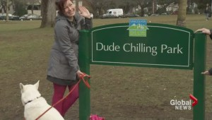 Dude Chilling Park sign makes debut