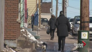 Nova Scotia immigration efforts fail to boost economy